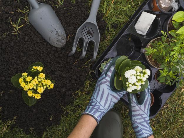 sjove aktiviteter i haven