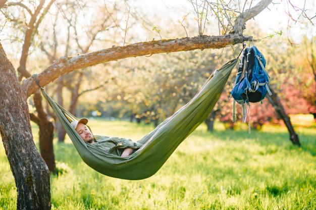 hængekøje under træ